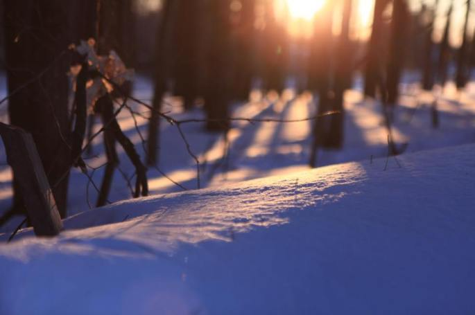 Snow at sunset